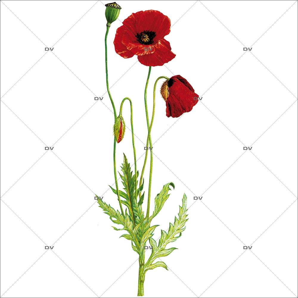 Sticker-coquelicots-fleurs-été-provence-adhésif-encres-écologiques-latex-décoration-intérieure-DECO-VITRES