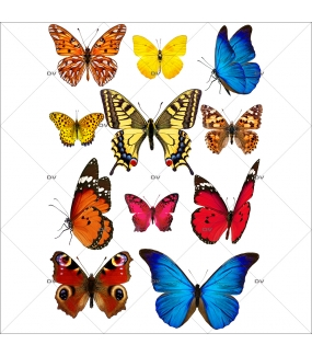 Sticker-papillons-multicolores-insectes-printemps-animaux-été-vitrophanie-décoration-vitrine-printanière-estivale-électrostatique-sans-colle-repositionnable-réutilisable-DECO-VITRES