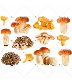 Sticker-champignons-automne-cèpes-girolles-vitrophanie-décoration-vitrine-automnale-électrostatique-sans-colle-repositionnable-réutilisable-DECO-VITRES