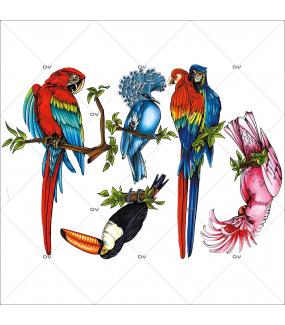 Sticker-5-oiseaux-exotiques-aras-perroquets-toucan-pigeon-été-animaux-vitrophanie-décoration-vitrine-estivale-électrostatique-sans-colle-repositionnable-réutilisable-DECO-VITRES