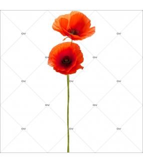 Sticker-tige-de-coquelicots-provence-fleurs-été-vitrophanie-décoration-vitrine-estivale-électrostatique-sans-colle-repositionnable-réutilisable-DECO-VITRES
