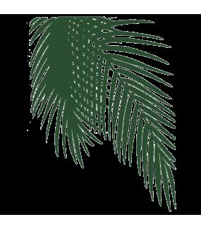 Stickers-feuille-palmier-adhésif-teinté-dans-la-masse-26-couleurs-au-choix-découpé-mural-ou-vitres-décoration-intérieure-DECO-VITRES
