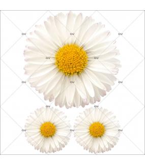 Sticker-pâquerettes-fleurs-printemps-été-vitrophanie-décoration-vitrine-estivale-printanière-électrostatique-sans-colle-repositionnable-réutilisable-DECO-VITRES