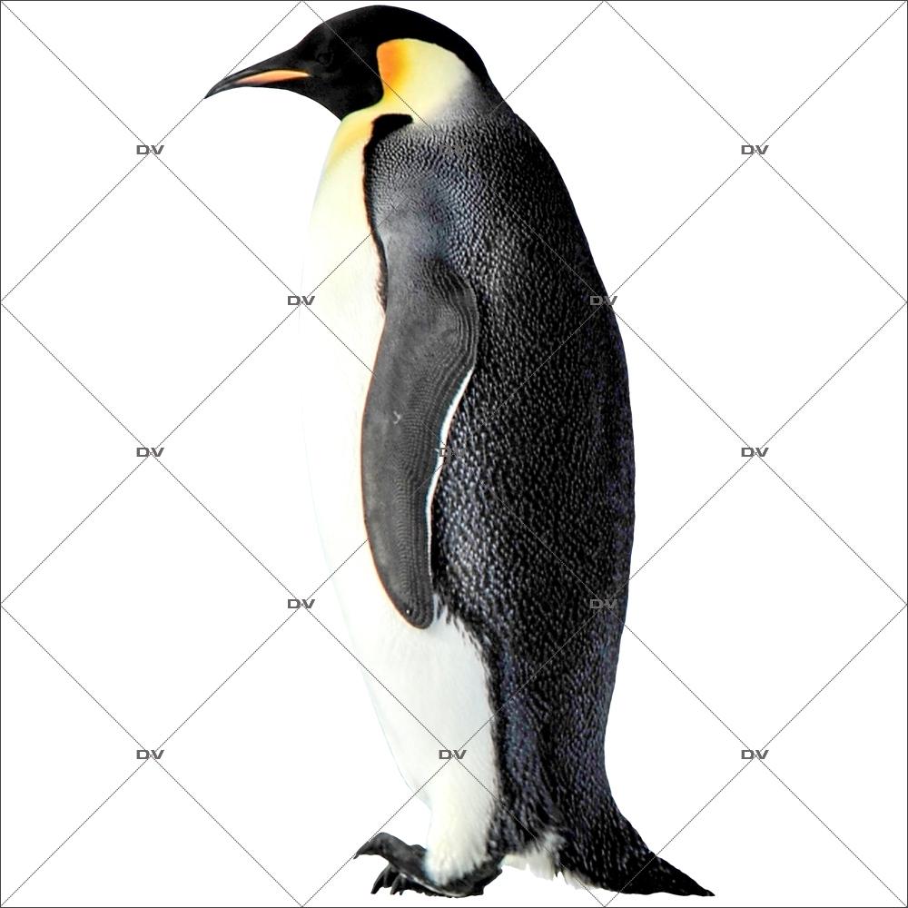 sticker-pingouin-adulte-noel-theme-polaire-arctique-nature-vitrine-noel-electrostatique-vitrophanie-sans-colle-DECO-VITRES-PG5D