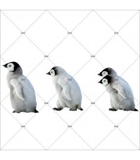 sticker-pingouins-bebes-en-file-indienne-frise-noel-theme-polaire-arctique-nature-vitrine-noel-electrostatique-vitrophanie-sans-colle-DECO-VITRES-PG6D