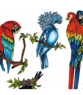 Sticker-5-oiseaux-exotiques-aras-perroquets-toucan-cacatoès-pigeon-été-animaux-vitrophanie-décoration-vitrine-estivale-électrostatique-sans-colle-repositionnable-réutilisable-DECO-VITRES